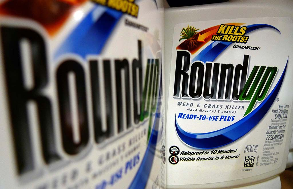 Rounup weed killer on the store shelf
